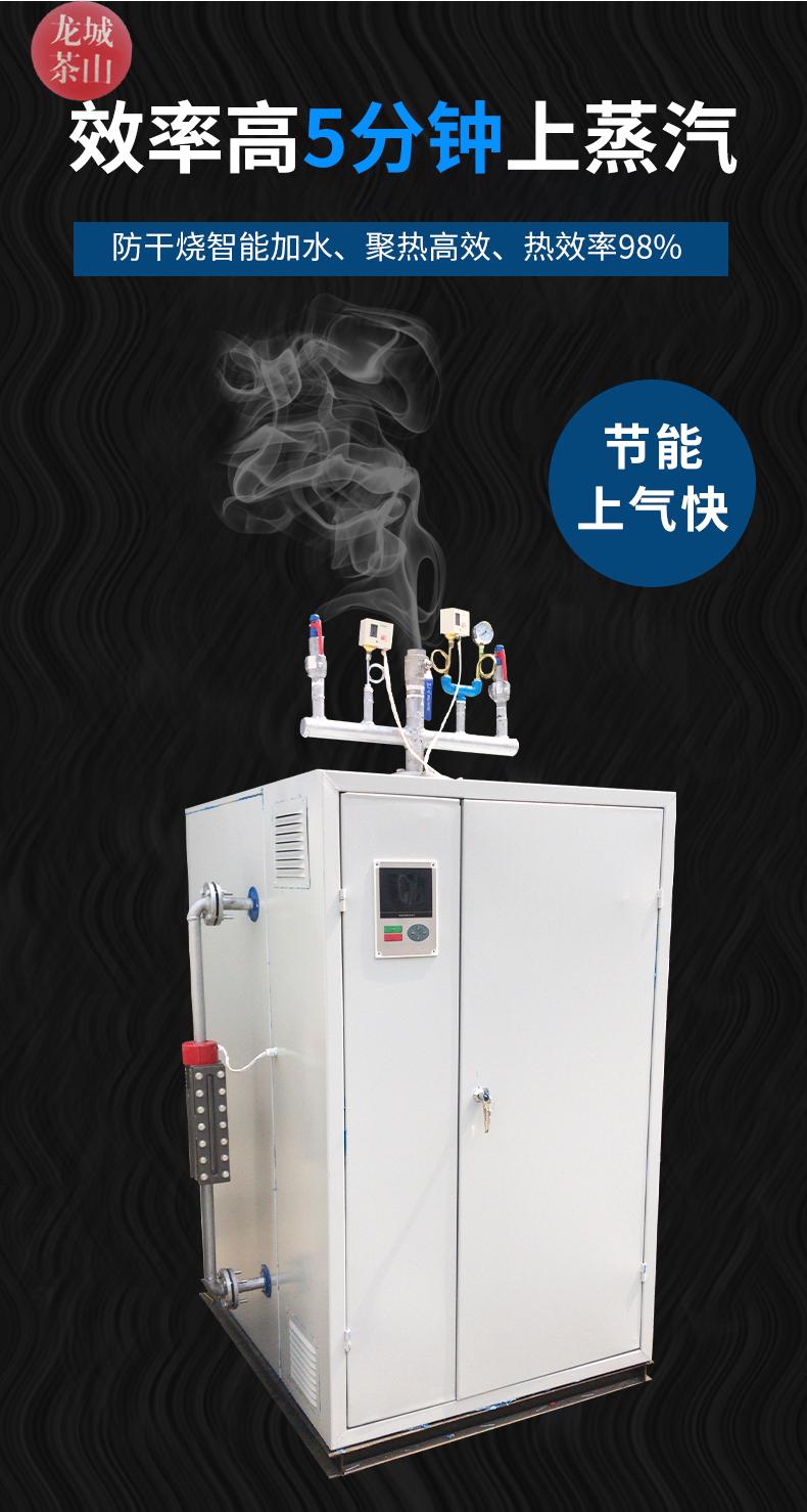 电蒸汽发生器(图7)