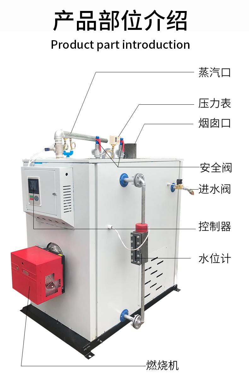 燃气燃油蒸汽发生器(图3)