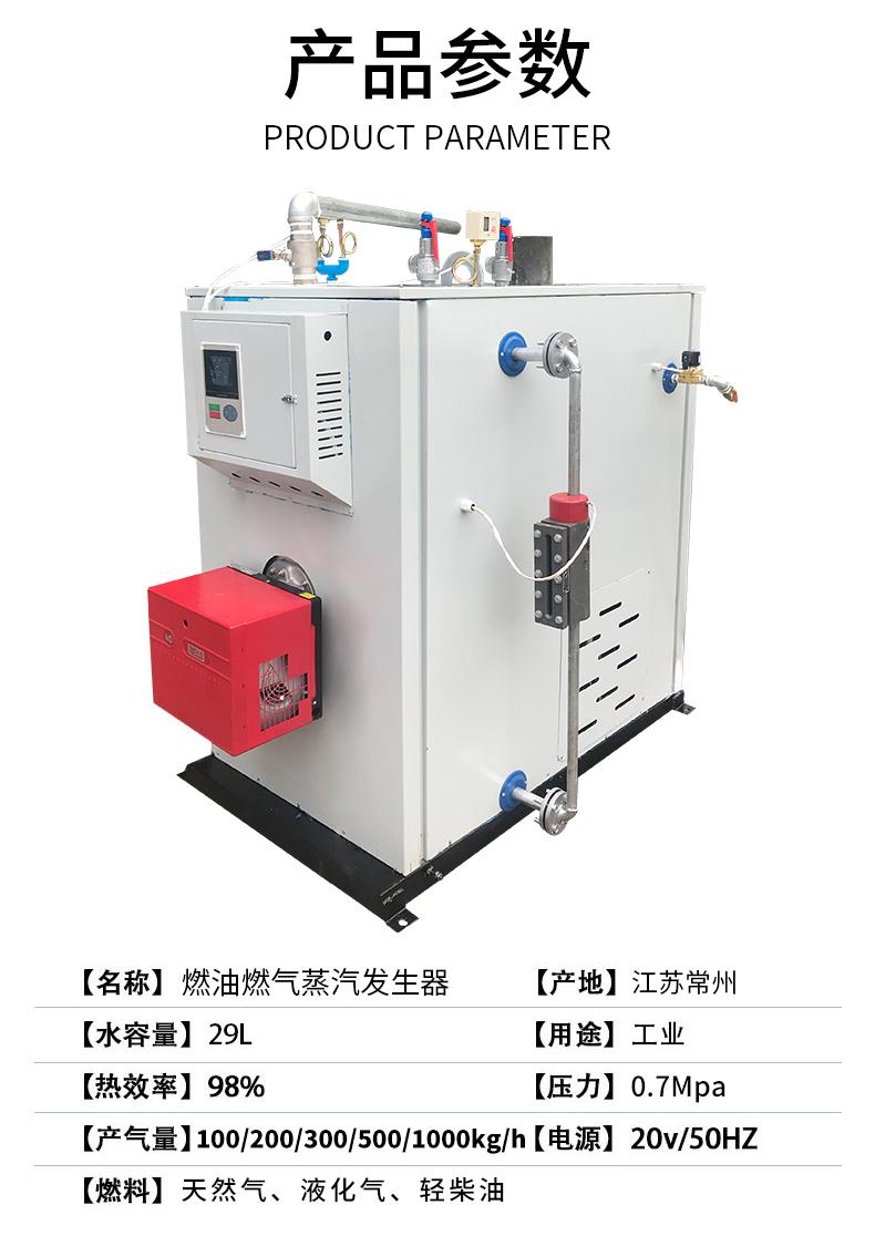 燃气燃油蒸汽发生器(图5)