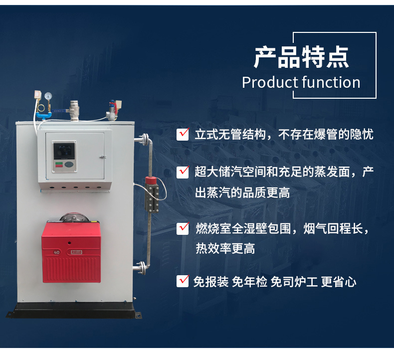燃气燃油蒸汽发生器(图7)