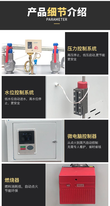 燃气燃油蒸汽发生器(图8)